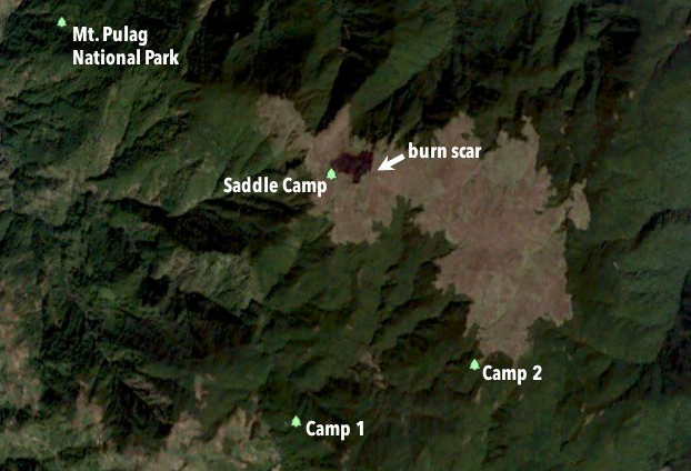 Mt Pulag Forest Fire The Digital Outcrop